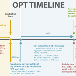 Process Guide - TImeline - OPT timeline